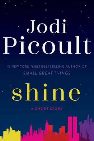 Jodi Picoult · novels about family, relationships, love, & more